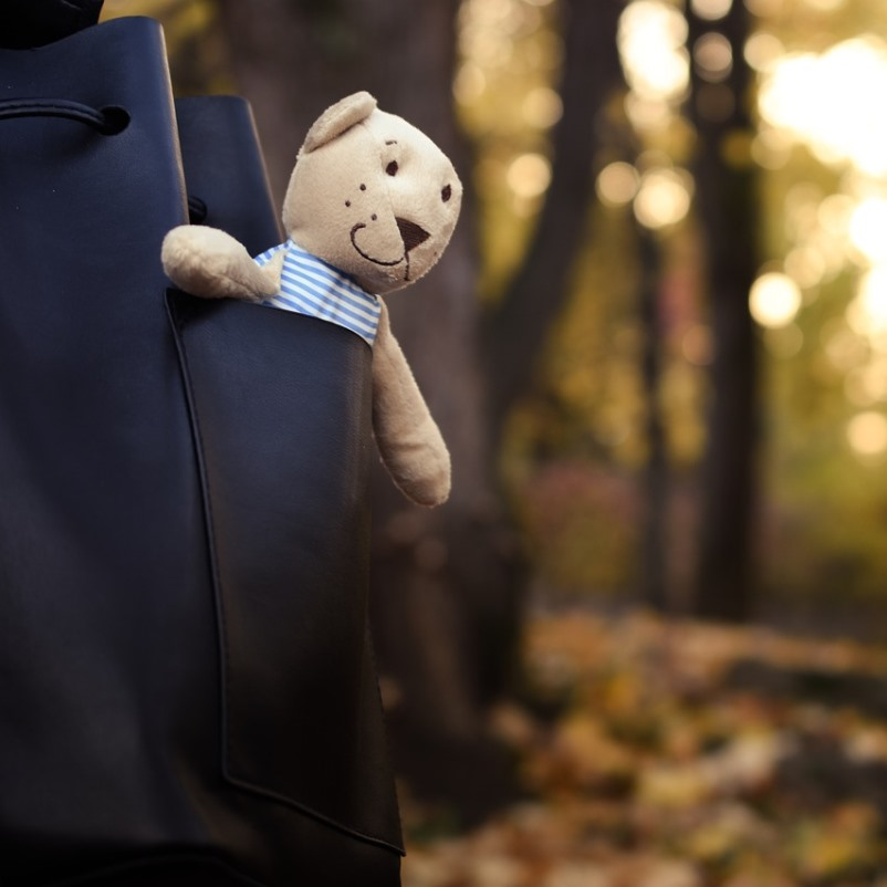 Teddy bear in a handbag in the woods